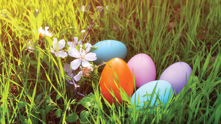 Spring Jamboree and Egg Hunt