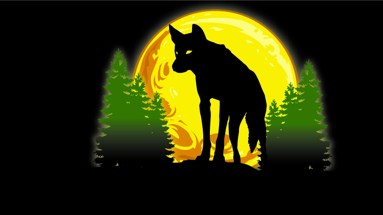 Coyote Night Hunt