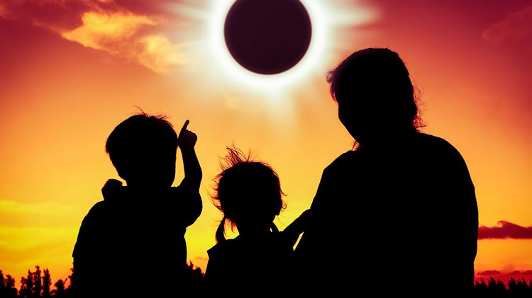 Solar Eclipse at the Library